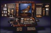 Traveling Museum Box